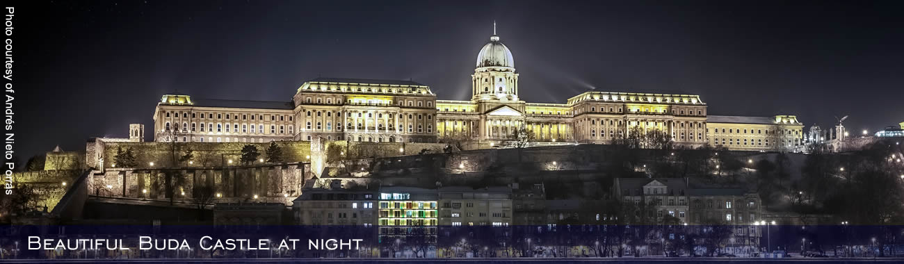 Beautiful Buda Castle at night